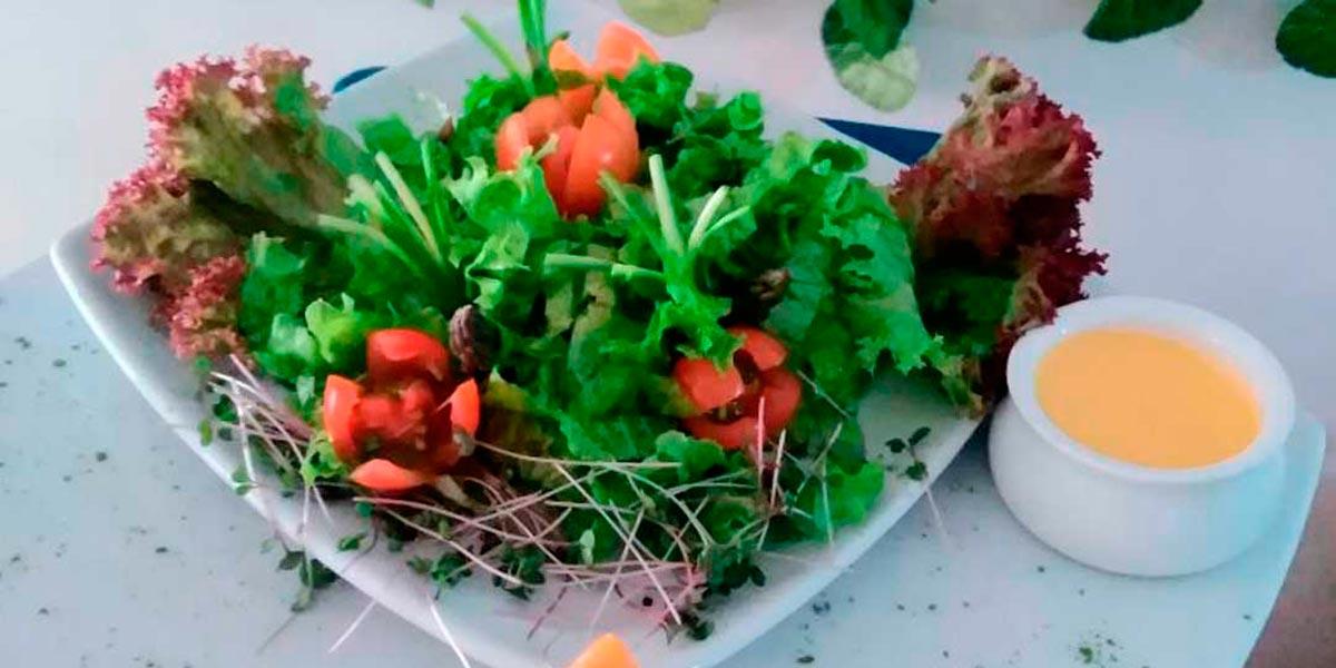 Ensalada de hojas verdes, un gusto para tu paladar