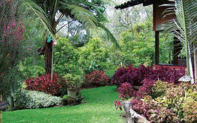10 ideas para crear un jardín campestre